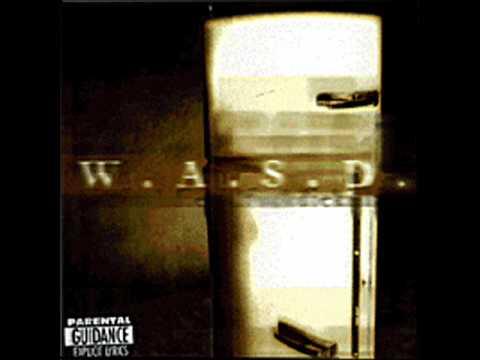 Wasp - U