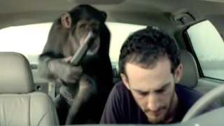 Funniest Trunk Monkey Commercials