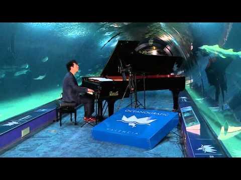 Lang Lang: Underwater Concert - L'Oceanogràfic