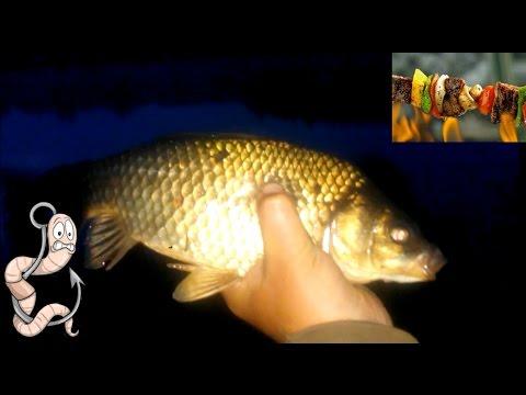 рыбалка в июне ночью