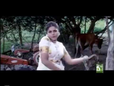 Aditch Adikkanum  Anbuthollai Tamil Movie Hd Video Song video