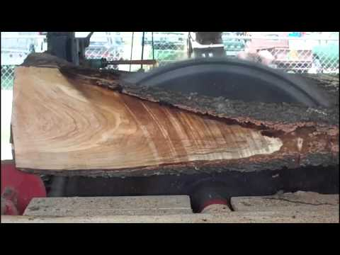 Sawmill demonstration 7 30 11