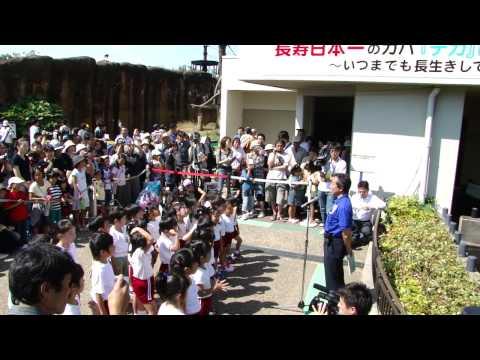 いしかわ動物園 57歳の雌のカバ「デカ」の長寿日本一を祝う会