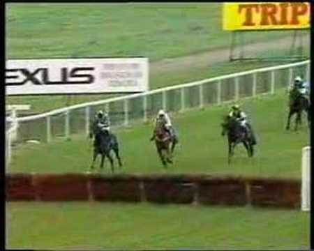 Horse Racing Gone Bad (part 1)