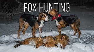 NH: Ketunmetsästys Ajokoirilla | Fox Hunting with Hounds | 2018