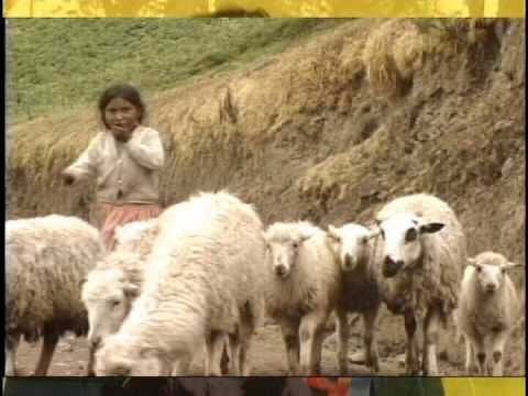 MÚSICA BOLIVIANA - ENRIQUETA ULLOA - POR BOLIVIA MI CORAZóN