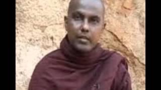 Buddha Parinirwanaya by Ven Galigamuwe Gnanadeepa Thero