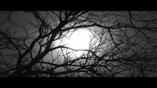 Watch Eliza Gilkyson Sleeper video