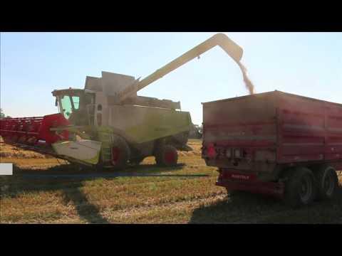 Литва может потерять статус сельскохозяйственной страны