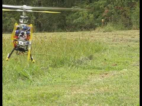 RC Helicopter VS Wasps