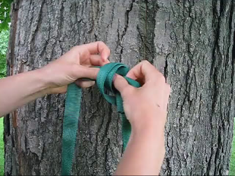 Tree Climbing: Useful Knots