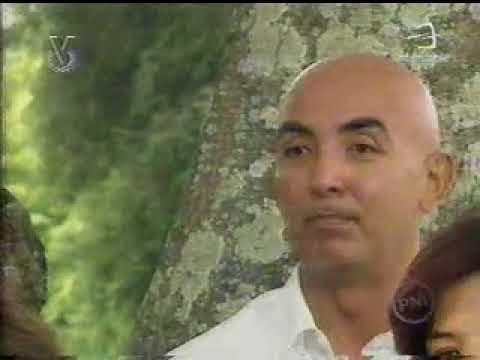 Aguinaldos Y Punto. Parranda Serrana