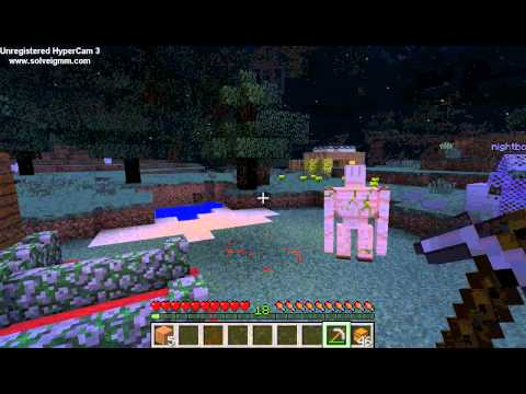 Minecraft Lansex Og Horseporn video