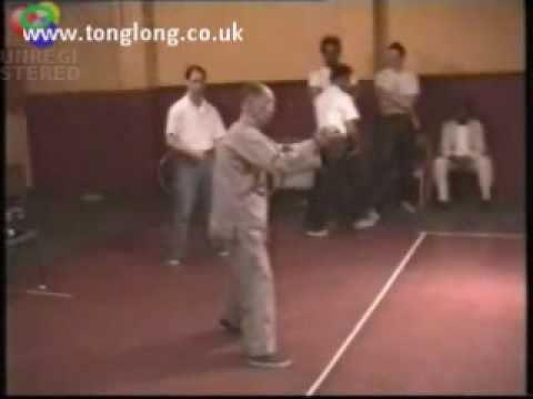 Si Gung Ip Sui - Southern Praying Mantis Kung Fu - Chow Gar Demo 1999 Image 1