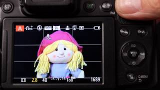 AE and AF lock, AFF, AFS and AFC focus styles on Panasonic Lumix Cameras Explained