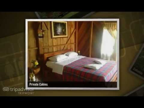 Suchipakari Jungle Lodge   Amazon Tours   Biodiversity Ecuador   Jungle Excursions   Eco tourism