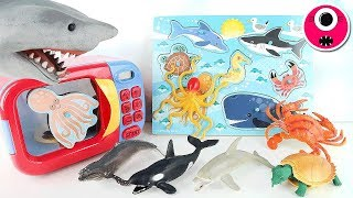 Learn Sea Animals With Wooden Puzzle/Animal Toys Surprise Eggs/Just Like Home Microwave Oven