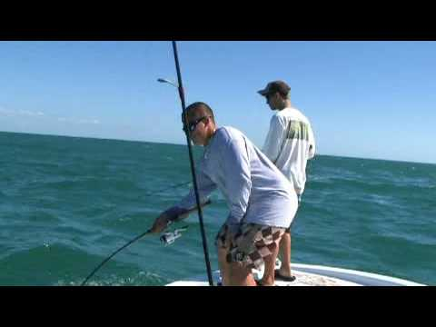 Seahunter 24 Cobia Fishing in Flamingo