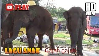 Gajah gajah Lagu Daerah Lagu Anak Indonesia Populer Sepanjang Masa