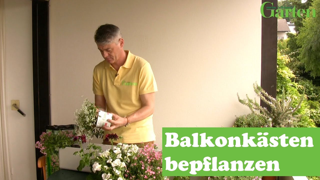 balkonkasten mit sommerblumen bepflanzen youtube. Black Bedroom Furniture Sets. Home Design Ideas