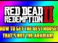The Best Horse That ISN T The Arabian Red Dead Redemption 2 Horses RDR2 mp3