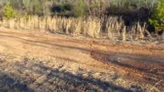 Download Rab Hunt Work Gun 039 3Gp Mp4