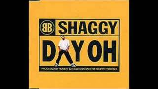 Watch Shaggy Day Oh video