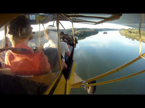 Piper Cub - Flying low