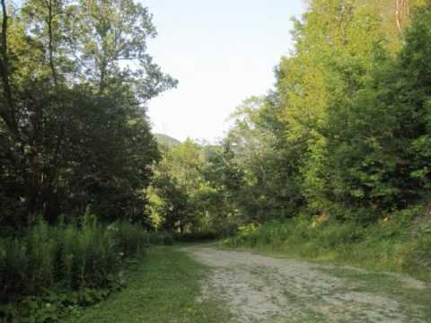 Western New York Cabin Rentals & Hunting Camp