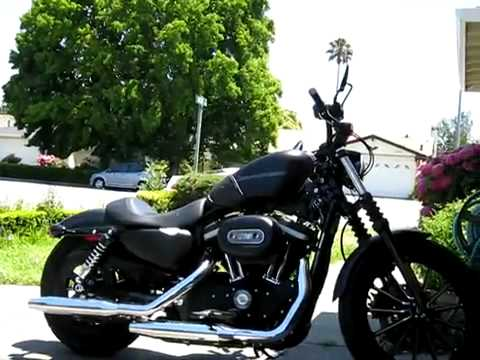 Harley Davidson Sportster Iron 883 Video