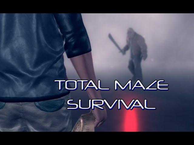 Руководство запуска: TotalMaze Survival по сети