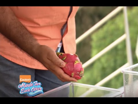 Made for Each Other | Episode 60 | Mazhavil Manorama