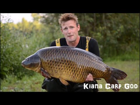 Darrel Peck in Belgium with 51lb carp showing his hookbait and rig