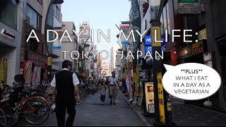 A Day in the Life of a Japan Study Abroad Student