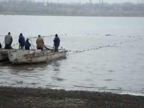рыбхоз прогноз клева в донецкой области краматорск