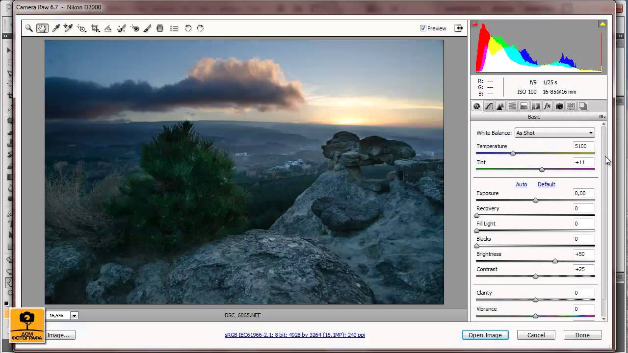Phaseone capture one pro 811 ml rus win64 = 160mb