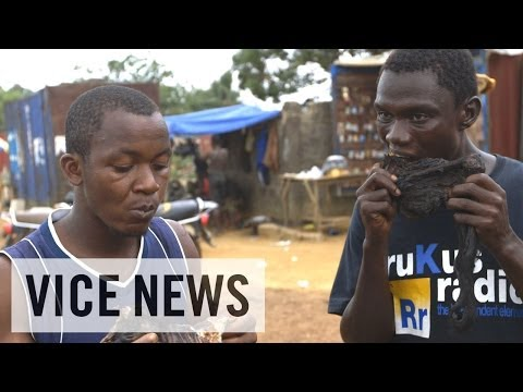 Subscribe to VICE News here: http://bit.ly/Subscribe-to-VICE-News  West Africa is being plagued by a new outbreak of Ebola — a terrifying disease that causes its victims to bleed to death from the inside out. Ebola has no cure, and the latest epidemic is spreading fast.   VICE News visited Liberia, where many feel the new outbreak began, borne from the bushmeat markets of Lofa. Western scientists feel that the consumption and preparation of meat from monkeys, fruit bats, and other forest animals is behind the transmission of Ebola, and possibly a new supervirus, which if left uncontrolled could kill a third of the world\'s population.  Eight Now Dead from Ebola Virus in Liberia\'s Capital: https://news.vice.com/article/eight-now-dead-from-ebola-virus-in-liberias-capital  Italy\'s False \'Ebola Outbreak\' Is Spread by Racists and Conspiracy Nuts: https://news.vice.com/article/italys-false-ebola-outbreak-is-spread-by-racists-and-conspiracy-nuts  Check out the VICE News beta for more: http://vicenews.com  Follow VICE News here: Facebook: https://www.facebook.com/vicenews Twitter: https://twitter.com/vicenews Tumblr: http://vicenews.tumblr.com/