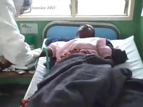 Ebola-Epidemie in Guinea
