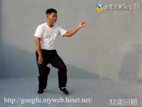 台灣武術Gung Fu Golden Eagle Chuan金鷹拳(baosu)