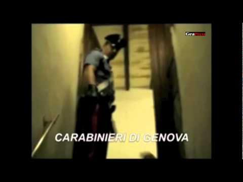 Casa canile – Genova