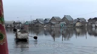 Kashmiri men sailing on a wooden boat on Dal Lake, Srinagar