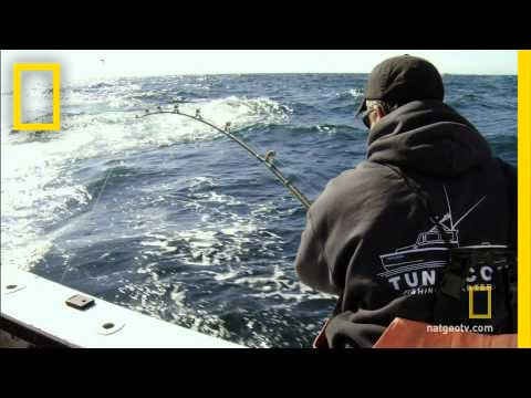 Wicked tuna meet captain dave youtube for Captain dave s fishing