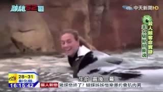 20150401中天新聞 殺人鯨奪命實錄 美女馴獸師斷魂