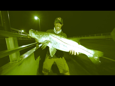 Fishing at Night for Giant Snook - I Caught My PB!
