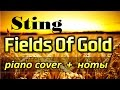 Sting - Fields Of Gold. PIANO COVER + НОТЫ