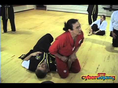 Joint Manipulation II Preview - CyberDojang.com Image 1