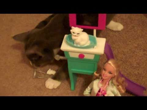 Funny Kitten attacks Barbie Kitty Care Vet Toys