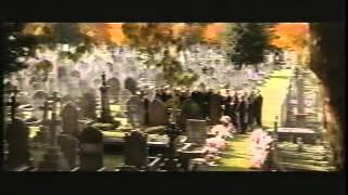Watch Bjork Play Dead video