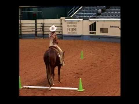 Secured Interest AQHA Open and Amateur Superior Western Pleasure Stallion