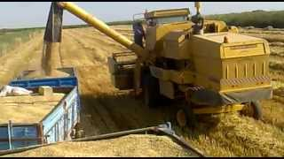 New Holland 8060 (2011 Harvesting)